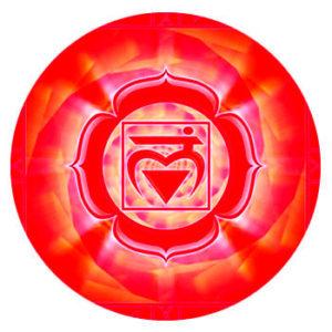 chakra maladhara, base de la colonne vértébrale
